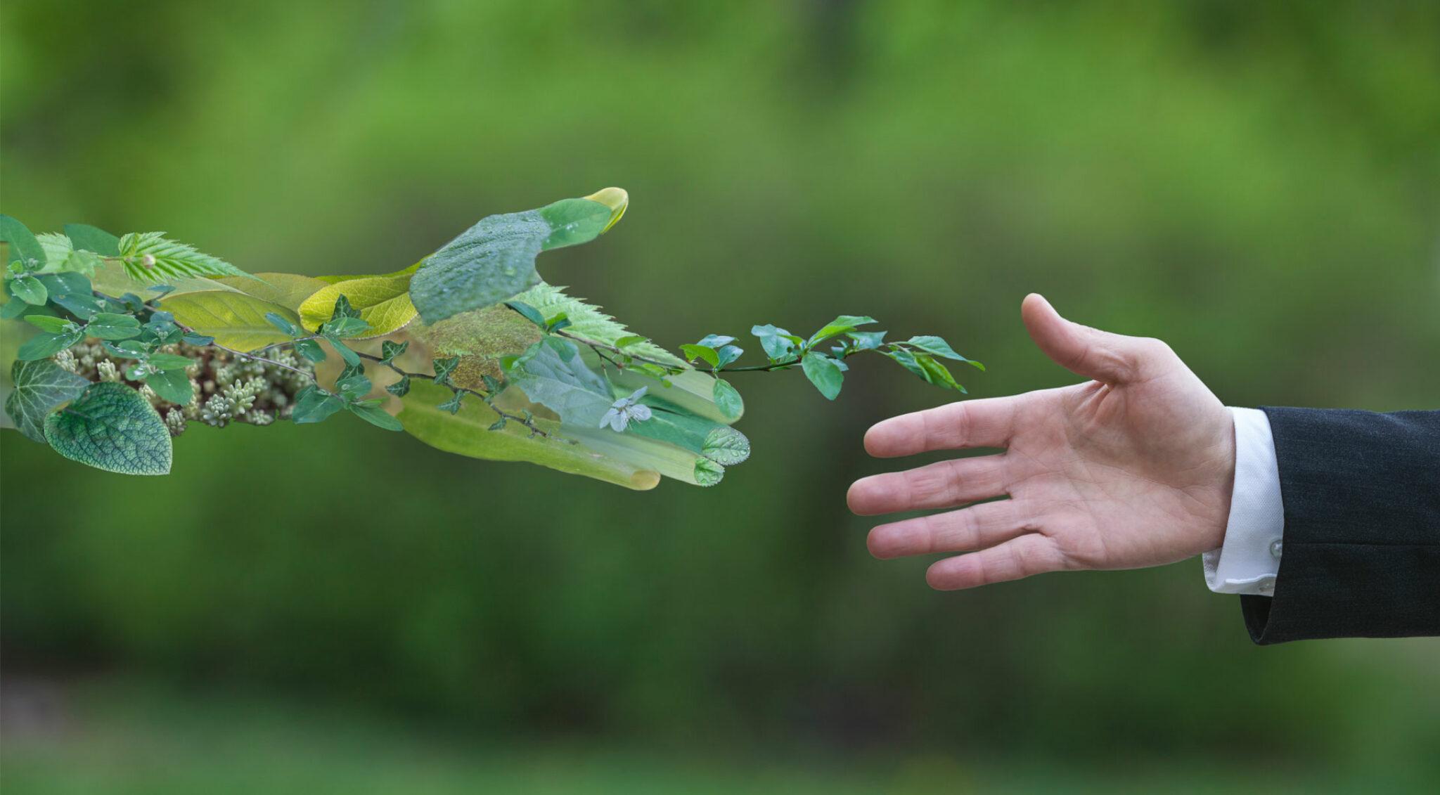 Ein Mann reicht seine Hand einer Hand aus Blättern.
