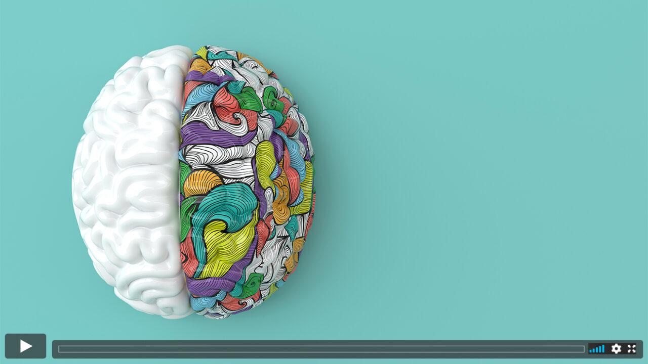 Illustration eines Gehirns, die rechte Gehirnhälfte ist bunt eingefärbt.