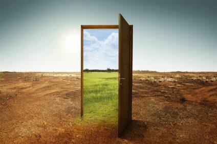 Offene Tür in der Wüste, im Türrahmen grüne Wiese und blauer Himmel.