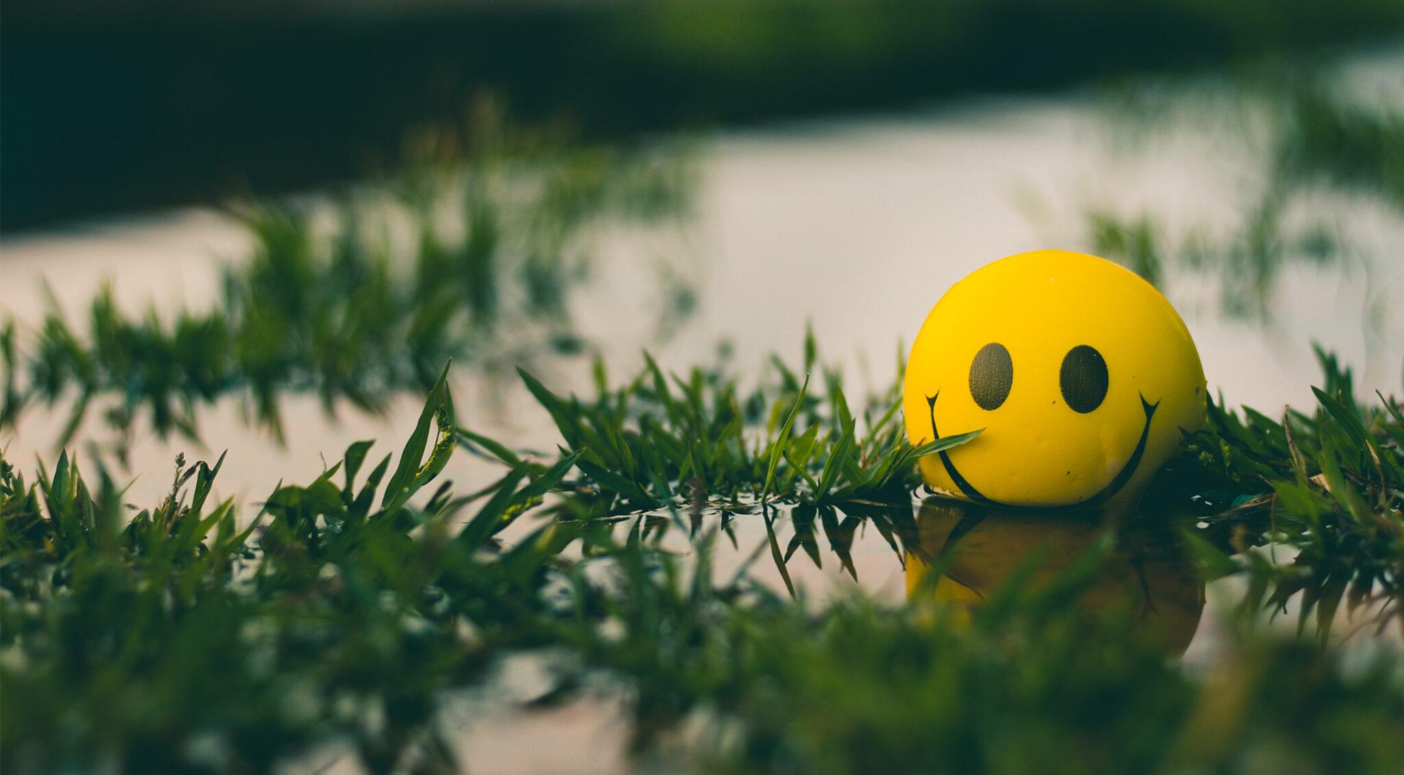 Smiley auf einem Zweig.