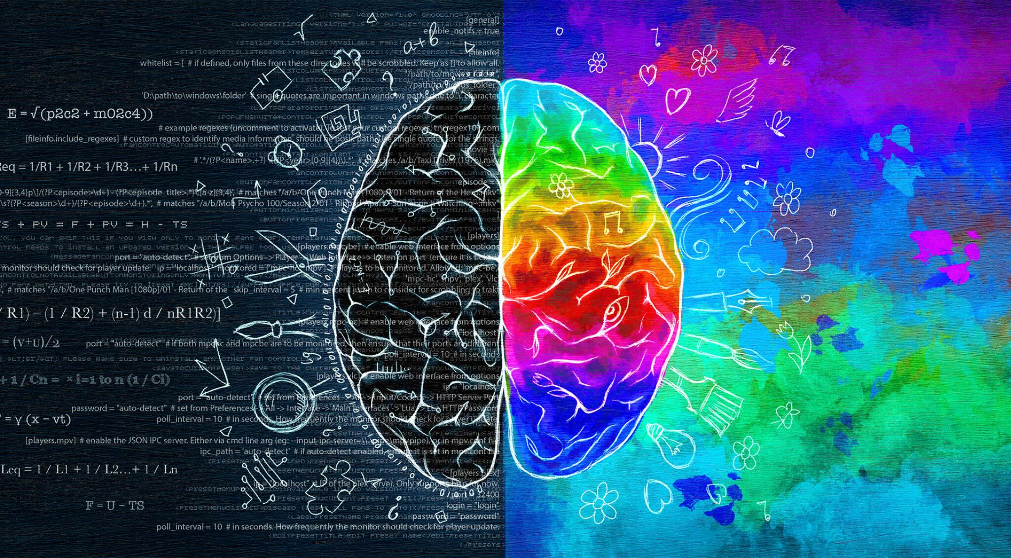 Illustration des Gehirns, unterteilt in die linke und rechte Gehirnhälfte.