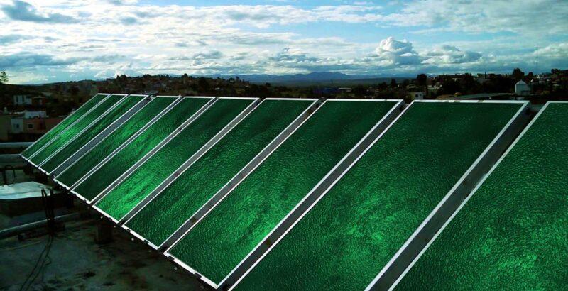 Solarthermieanlage, bewachsen mit Algen.