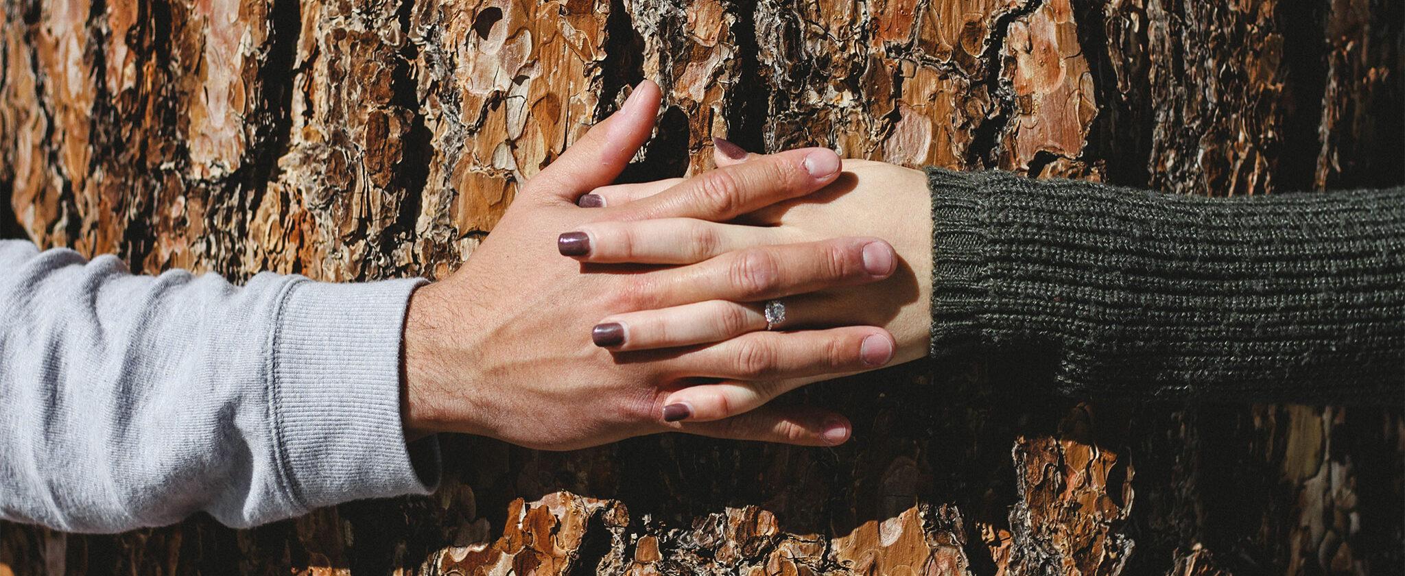 Ein Mann und eine Frau verschränken ihre Hände vor einem Baum.