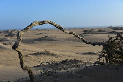 Skelettküste Namibia